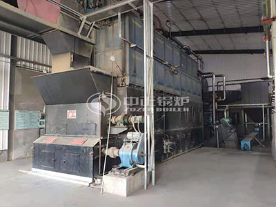 15 Tons Biomass Steam Boiler Used for Food Industry
