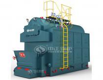 DZL Coal Fired Chain Grate Steam Boiler