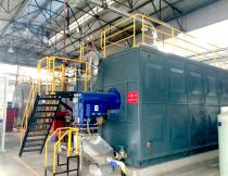 25T SZS Gas Fired Steam Boiler for Heating Industry