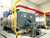 WNS Oil Condensing Hot Water Boiler