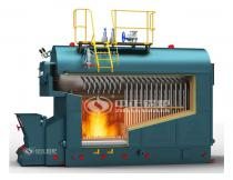 DZL Coal Fired Packaged Steam Boiler