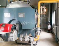 5 tons gas fired steam boiler in nigeria