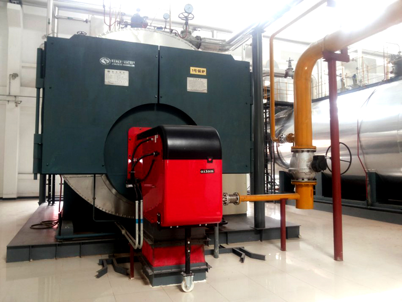 3T Gas Fired Steam Boiler in Medical Industry
